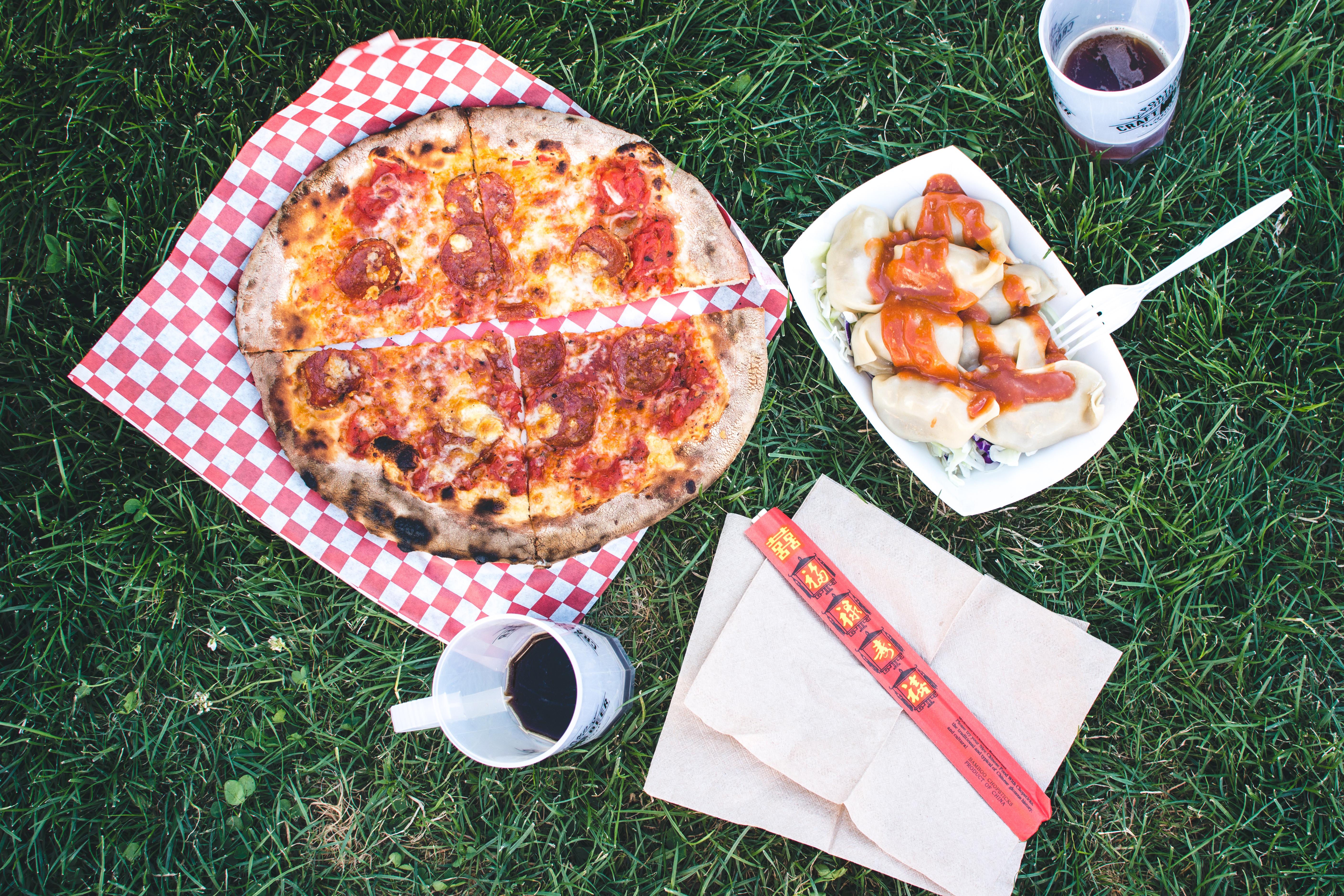 foodiesfeed.com_pizza-salami-and-korean-dumplings-mandu-on-a-grass